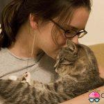 como saber cuando tu gato te quiere