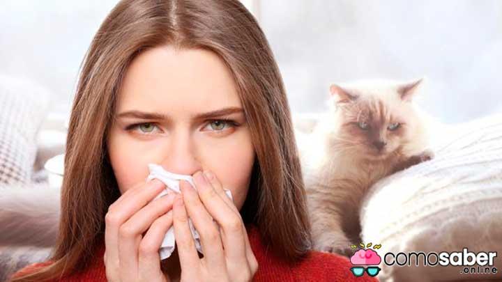 Alergia a comidas y a medicamentos